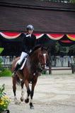 Equestrian 3Q Classic Stock Images
