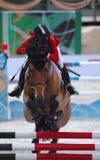 equestrian obrazy royalty free