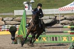 equestrian Fotografia Stock Libera da Diritti