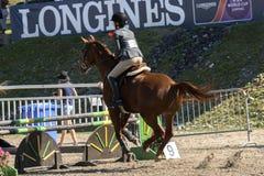 equestrian Immagini Stock