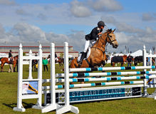 Equestrian all'esposizione 2012 di Canterbury A&P fotografie stock libere da diritti