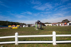 Equestrian Arena Horse Rider Championships Royalty Free Stock Photos
