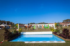Equestrian Arena Horse Rider Water Royalty Free Stock Photography
