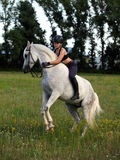 Equestrian bareback поднимая аравийскую лошадь Стоковое Изображение