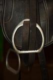 equestrian comber Obrazy Stock