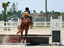 Equestrian Competition. Horse and rider on an obstacle course at an equestrian competition Royalty Free Stock Image