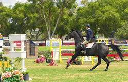 Equestrian Competition, Del Mar, California Stock Photo