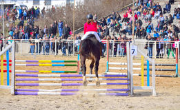 Equestrian competition horse jumping Varna Bulgaria. Back view of equestrian girl jumping brown horse over rails during the equestrian competition for junior and royalty free stock images