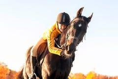 Equestrian del adolescente que abraza su caballo Ou vibrante del verano Imagen de archivo libre de regalías