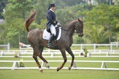Equestrian del Dressage Fotografía de archivo libre de regalías