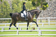 equestrian di dressage immagini stock libere da diritti