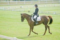equestrian di dressage Fotografia Stock
