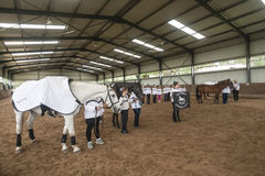 Equestrian di parata del Vaulting del cavallo fotografia stock
