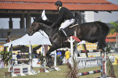 Equestrian di salto di esposizione prima della Cup 2010 Fotografia Stock