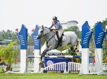 equestrian doskakiwania przedstawienie Obrazy Royalty Free