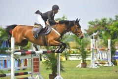 equestrian doskakiwania przedstawienie Zdjęcie Stock