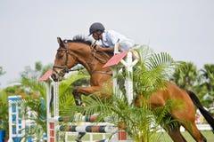equestrian doskakiwania przedstawienie Obrazy Stock