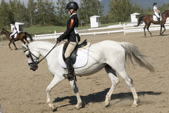 Equestrian - Dressage Royalty Free Stock Image