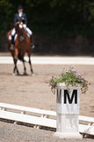 Equestrian Dressage Royalty Free Stock Images