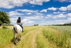 Equestrian em horseback fotografia de stock