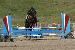 Equestrian event - jumper Stock Photo