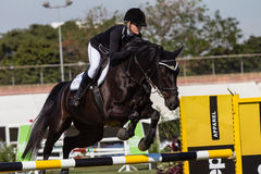 Equestrian Horse Girl Champs Durban Royalty Free Stock Photos