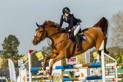 Equestrian Horse Girl Jumping Stock Photos