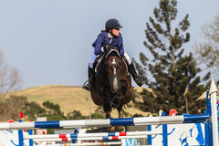 Equestrian Horse Girl Jumping Royalty Free Stock Photography