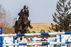 Equestrian Horse Girl Jumping Royalty Free Stock Images