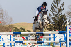 Equestrian Horse Girl Jumping Royalty Free Stock Image