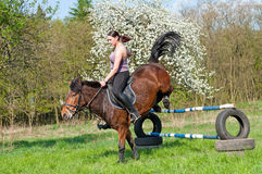 Equestrian - Horse Jumping. Pretty girl and bay horse during the sunny day Stock Photo
