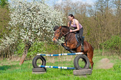Equestrian - Horse Jumping. Pretty girl and bay horse during the sunny day Stock Photography