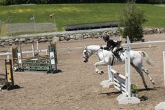 Equestrian - horse jumping Stock Photos