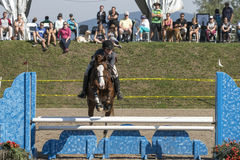 Equestrian - horse jumping Royalty Free Stock Images