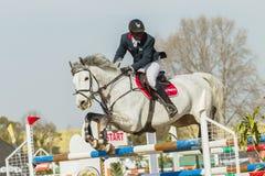 Equestrian Horse Man Jumping Royalty Free Stock Photos