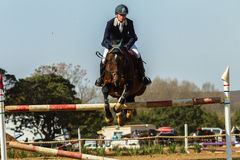Equestrian Horse Man Jumping Stock Image