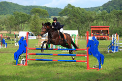 Equestrian horse riding. Equestrian horse rider jumping over an obstacle, in the middle of a green landscape Stock Photos
