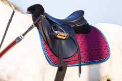Equestrian Horse Saddle Closeup Royalty Free Stock Images