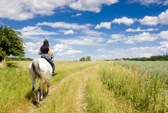 Equestrian on horseback stock photography