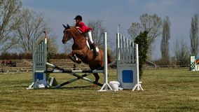 Equestrian horseback jumping obstacle Royalty Free Stock Image