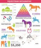 Equestrian infographic ilustracja wektor