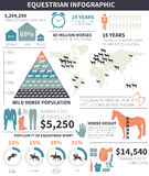 Equestrian infographic Stock Photos