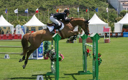 Equestrian International Show Jumping Stock Photography