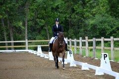 Equestrian jazda przy dressage przedstawieniem Zdjęcie Royalty Free