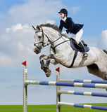 Equestrian jumper. Young girl jumping with grey horse Royalty Free Stock Image
