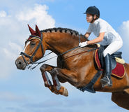 Equestrian jumper - horsewoman and bay mare. Young woman jumping with bay horse Stock Photo