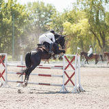 Equestrian jumping competition background Stock Photos