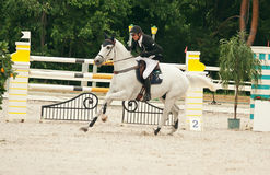 Equestrian jumping sport Stock Image