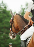 Equestrian jumping sport. Outdoor cloudy day Stock Images