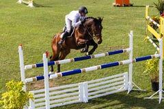 Equestrian Koński Męski Skacze lot Zdjęcie Royalty Free